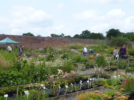 12.07.15 NGS Open Day 1